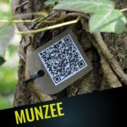 Munzee-0